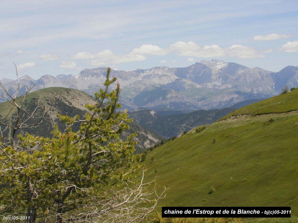 Des alpages rutilants de fleurs, des crêtes gazonnées, un horizon d'une grande pureté