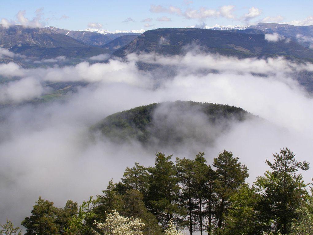 extrémité Sud de la barre des Dourbes à hauteur du Col du Corobin .