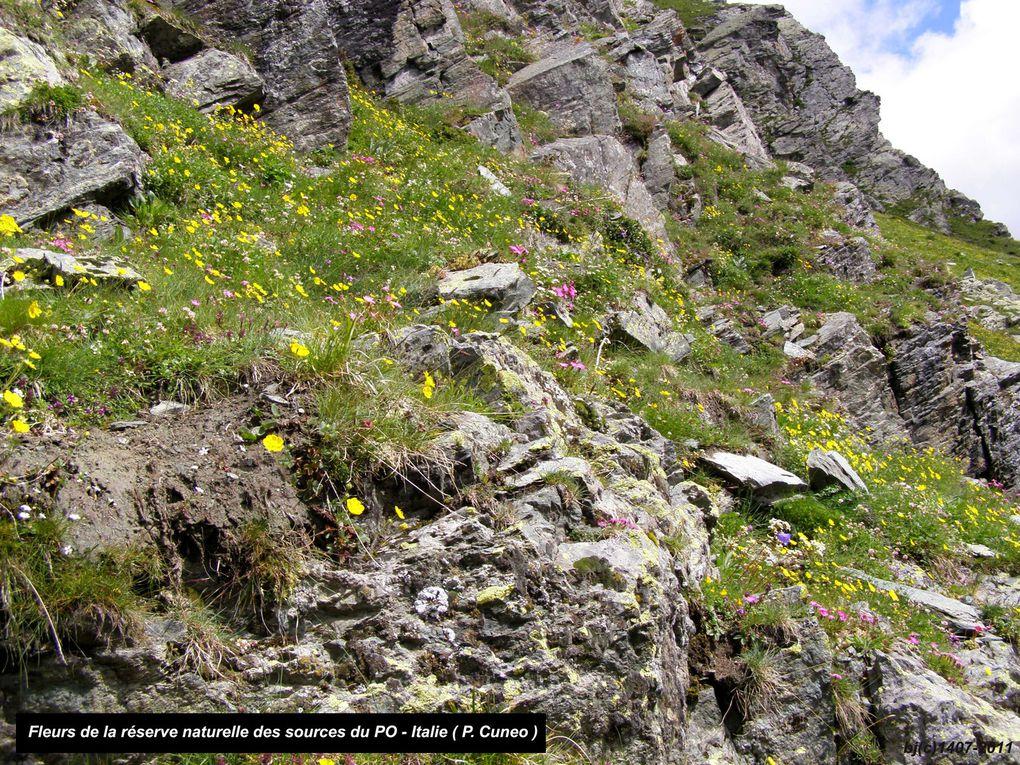 Tour du VISO 2011 - ETAPE 2 - Rfge VISO -   - COL DE LA TRAVERSETTE - Rfge QUINTINO SELLA ( IT )