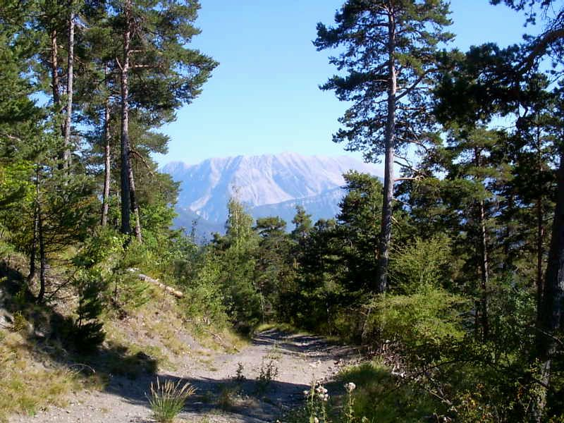 CRETES et SOMMET du BLAYEUL (2189 m ) - Alpes de Haute Provenc