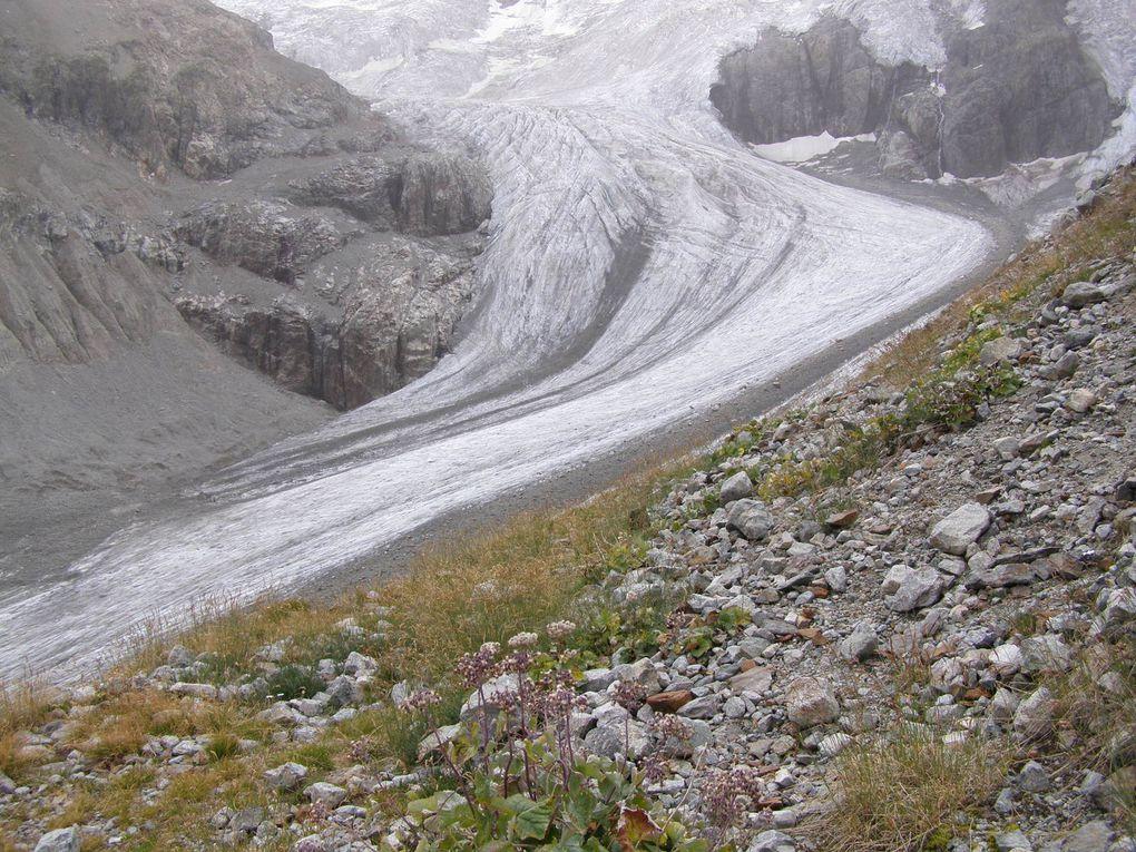 GLACIERS des ECRINS - La PILATE et MEIGE SUD