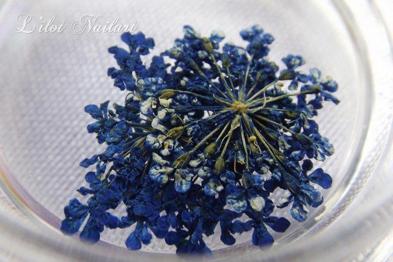 Fleur séché_BornPretty Nail art printanier