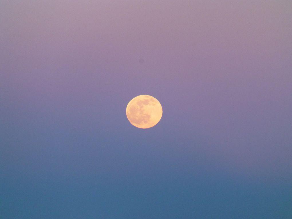 """Au cours de notre descente nous """"croisons"""" cet écrin de verdure avec ce petit lac d'altitude, endroit magique caché dans la forêt. Au loin le village d'Ortu, étape qui va nous permettre de rejoindre Guagnu par les vallons et de remonter vers Petra Piana d'où nous aurons une vue superbe sur une partie du Golfe de Sagone. Le ciel est clair est on a droit à une très belle montée de lune. Mais Ciel clair en montagne veut souvent dire froid...il gèlera cette nuit et il fera 5° dans le refuge, ça conserve!!"""