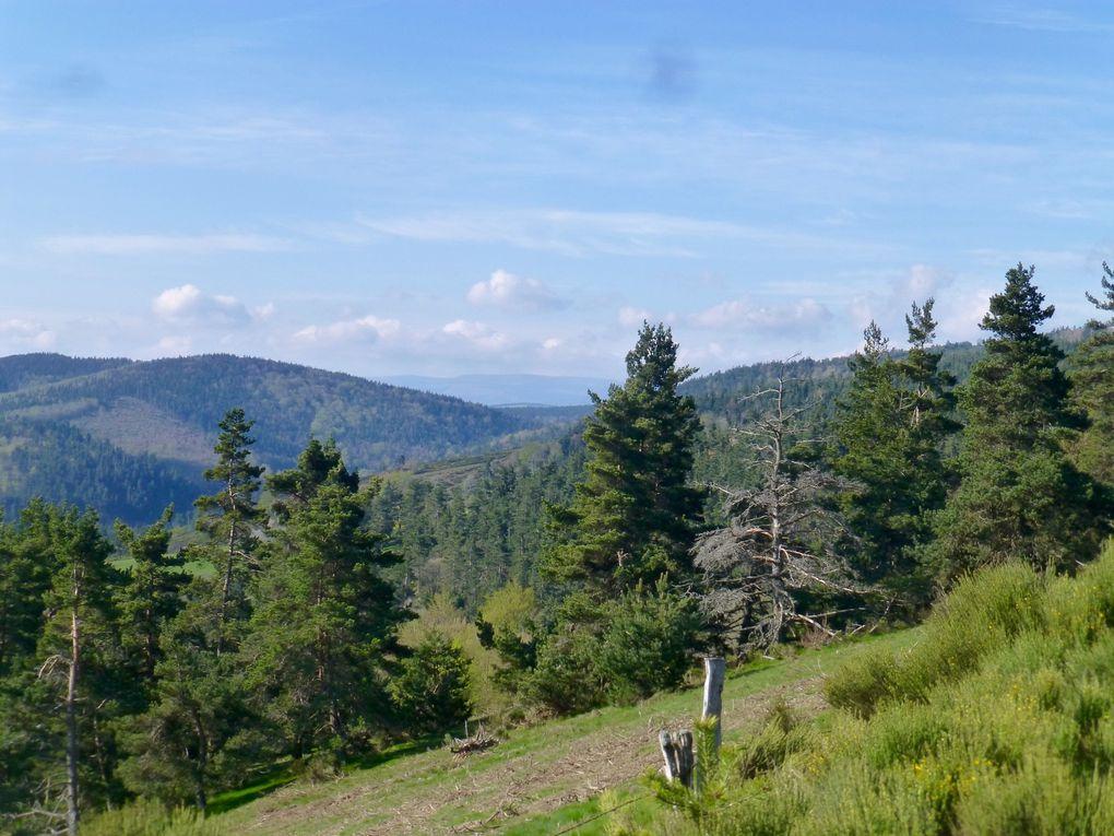 La journée avait bien commencé...quelques kilomètres en trop auraient pu la gâcher mais on a été recompensé par la beauté des paysages, et la source du Lot!