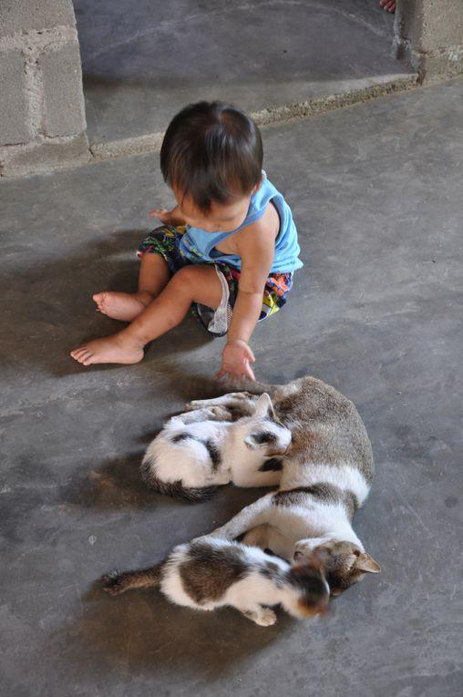 Le meilleur ami des enfants philippins est ….?