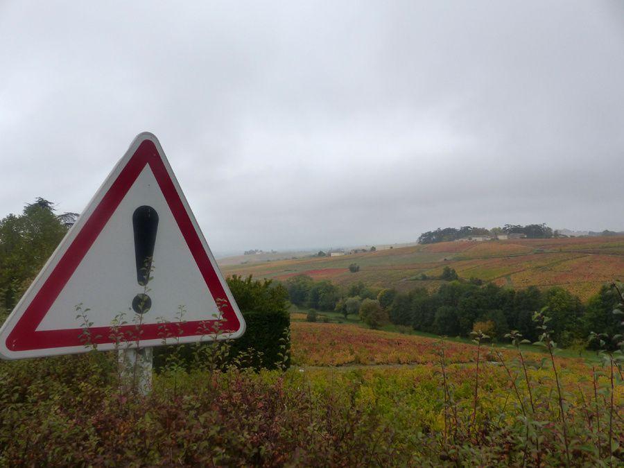 Diaporama des paysages des côteaux du Mont Brouilly en automne