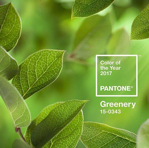 Greenery, la couleur de l'année 2017
