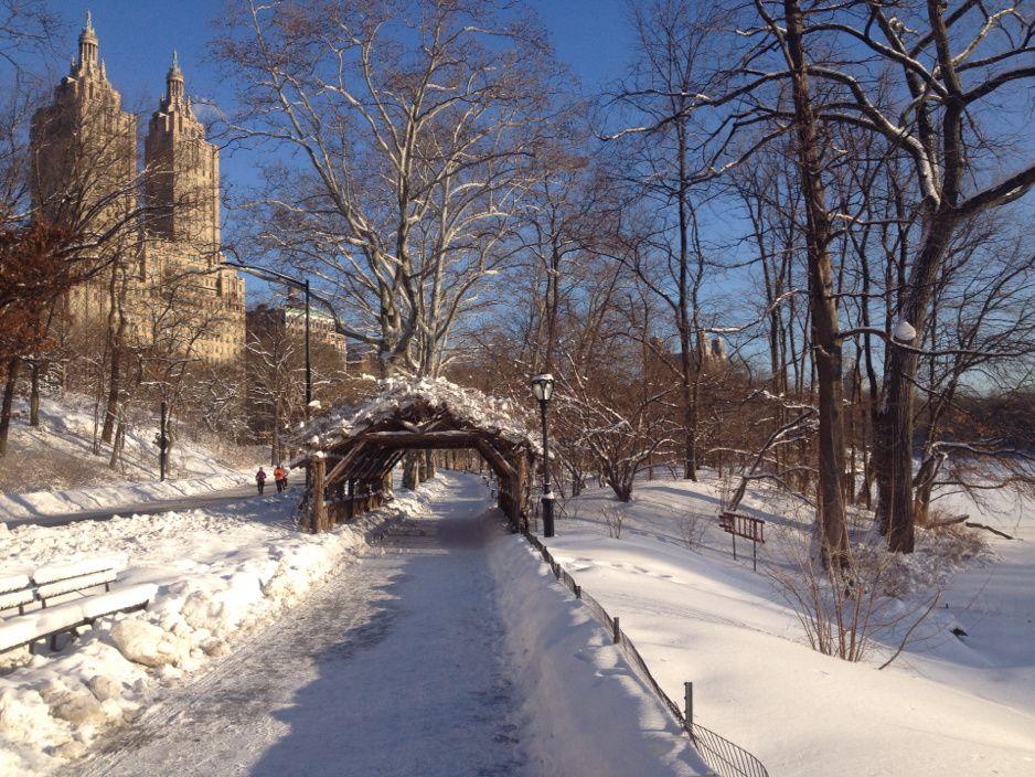 Central Park (encore) sous la neige