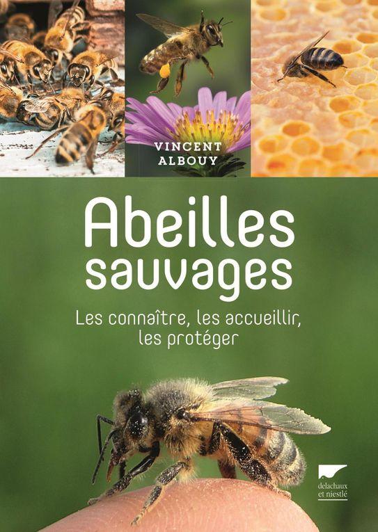 Derniers livres de Philippe Boyer et de Vincent Albouy