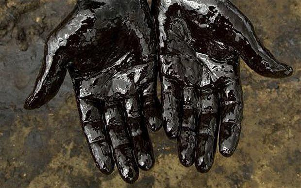 La catastrophe pétrolière du Golfe du Mexique, mais aussi celle du Nigeria par Bill Ryan (07/2010) [VOSTFR]