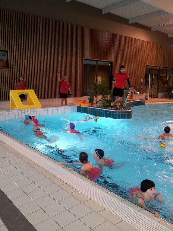Dernière séance de piscine avant Noël