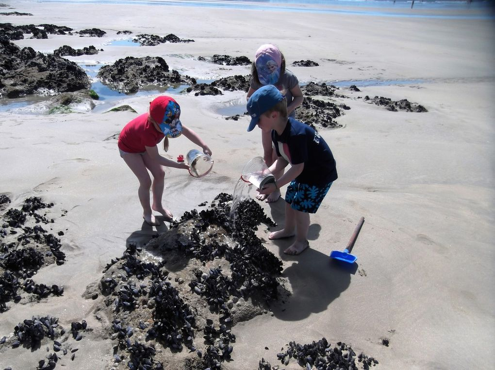 &quot&#x3B;Les joies de la plage, le soleil, le sable , la mer, les rochers ...&quot&#x3B; juillet 2016