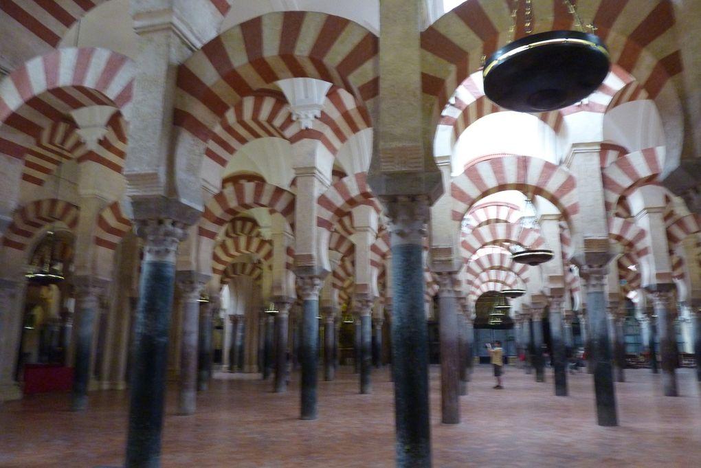 Moquée cathédrale
