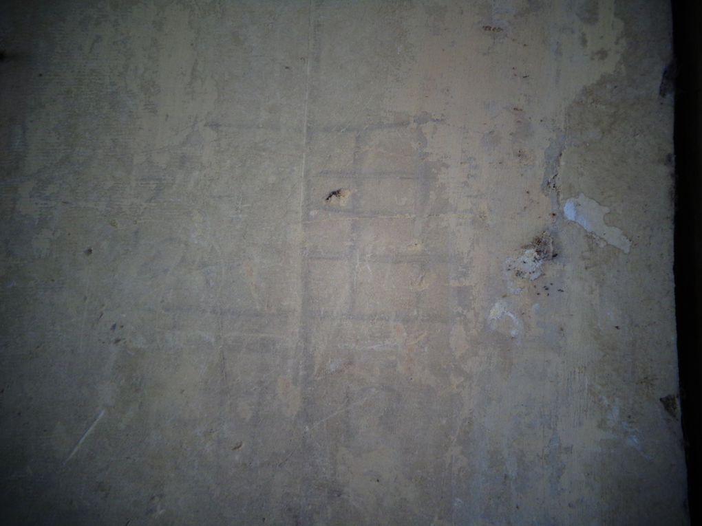 Ces marques lapidaires, il ne s'agit pas ici de marques de tâcherons, ne sont pas déchiffrables au premier coup d'œil, tel ce clocher en feu, souvent représenté à St Pierre, mais ces signes pourraient faire l'objet d'un prochain article. Et une photo, dite animalière, un insecte, certainement un petit frelon est pris au piège par un petit paquet de matière fibreuse, mais soyons rassurés, après la photo voulant le mettre à l'air libre il s'est détaché de lui-même... peut-être pour faire une piqûre un peu plus loin.....