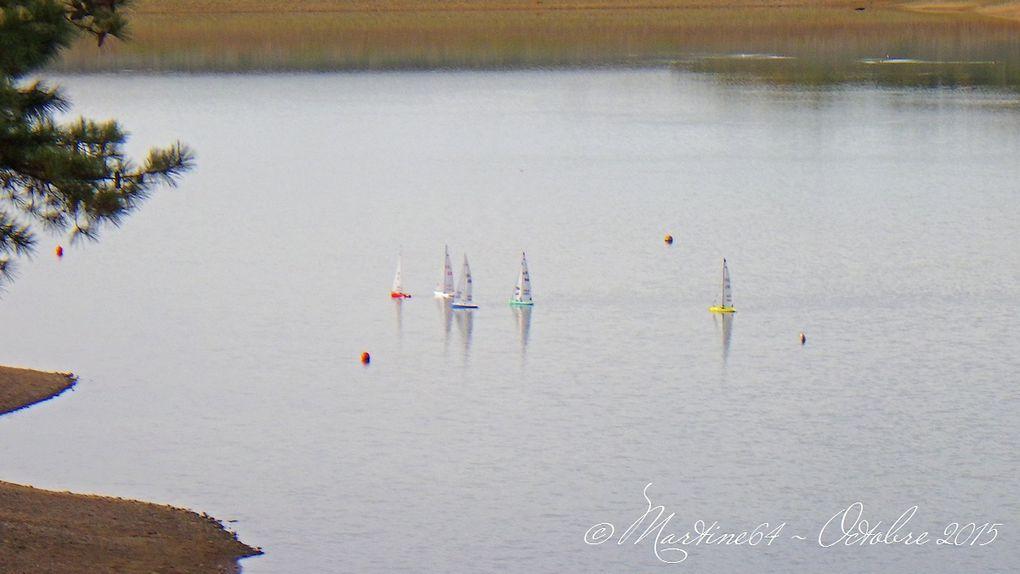 Lac de Serres-Castet (près de Pau) en 2015