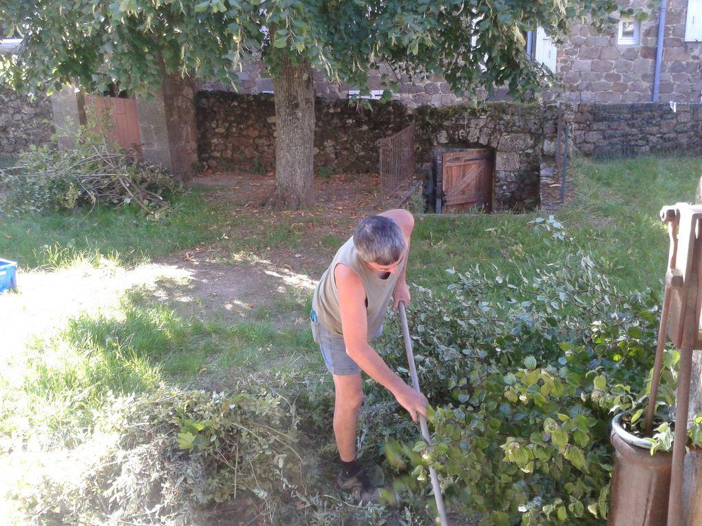 Débroussailler, élaguer, balayer et jeter les branches