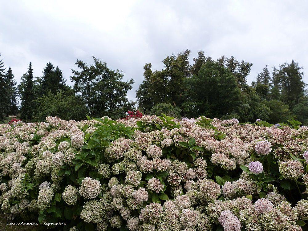 Quelques images de la visite du parc du château et de son orangerie.