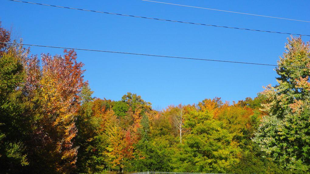 L'automne québécois