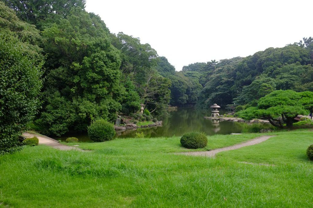 Le Parc de Shinjuku-Gyoen