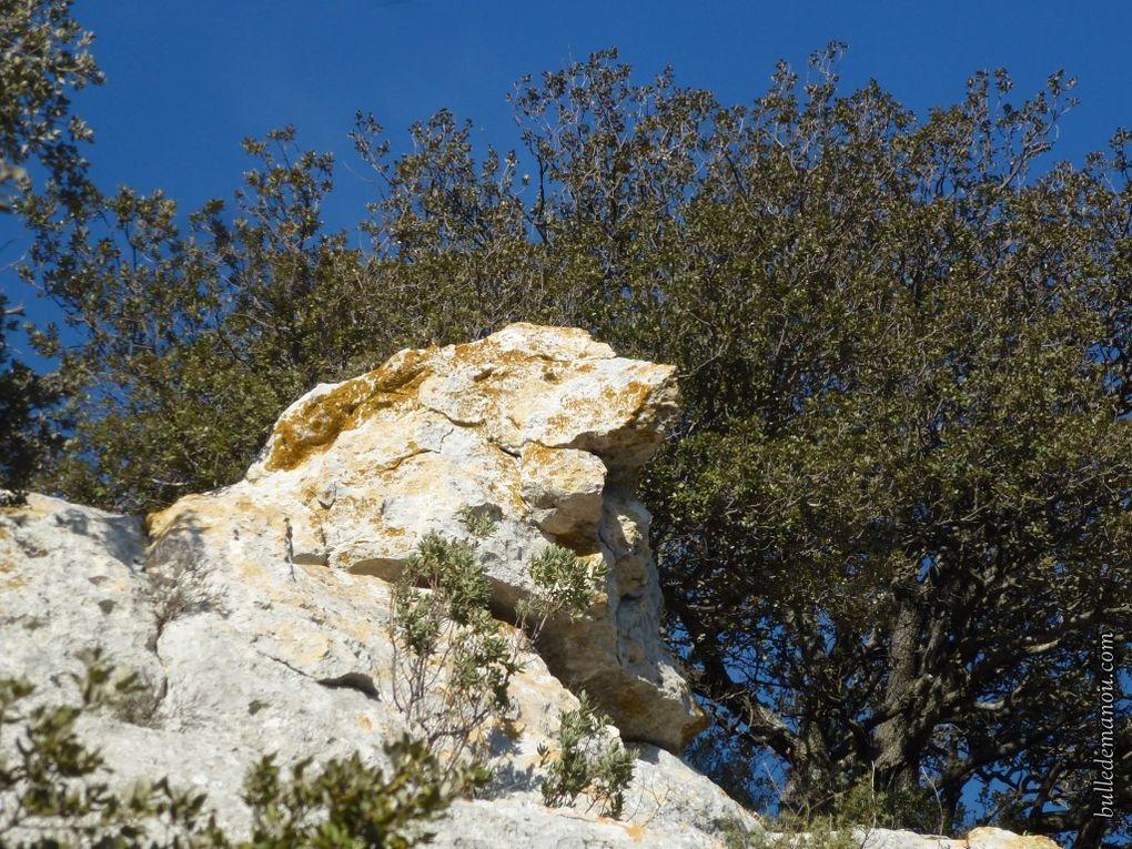 Les rochers du plateau calcaire