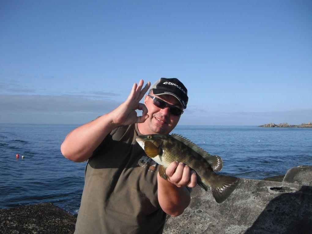 Jeu concours rockfishing-game