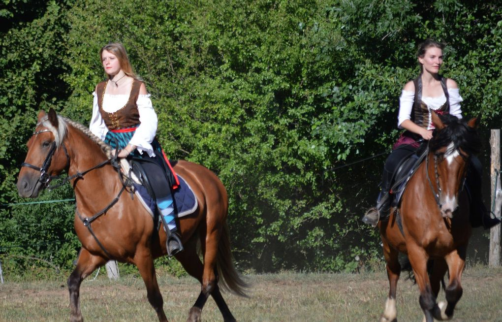 fête du cheval à saint-geniès