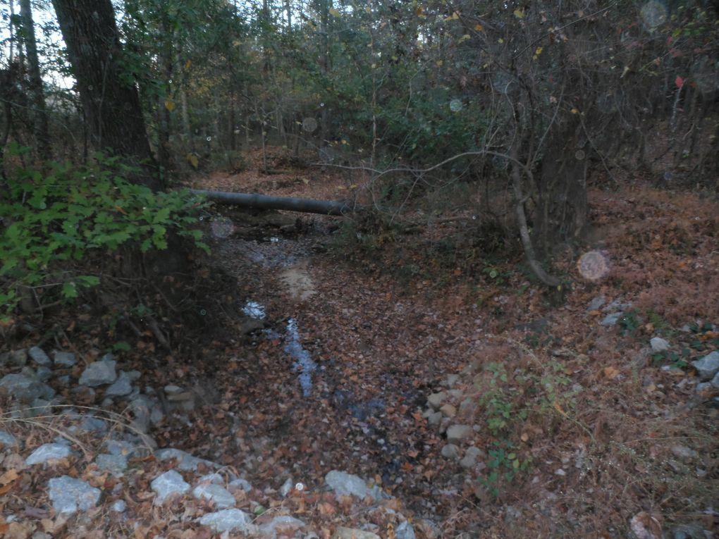 Moins drôle mais très important. Notre région (sud-est des USA) a connu un épisode de sècheresse pendant l'automne. Reportage d'Américano : un petit ruisseau qui coule en permanence se retrouvant complètement asséché. D'autres cours d'eau un peu plus important ne subsistant plus que sous forme de flaques d'eau...  Près de la ceinture verte, une cascade bien alimentée d'ordinaire ne laissant plus passer qu'un mince filet d'eau.