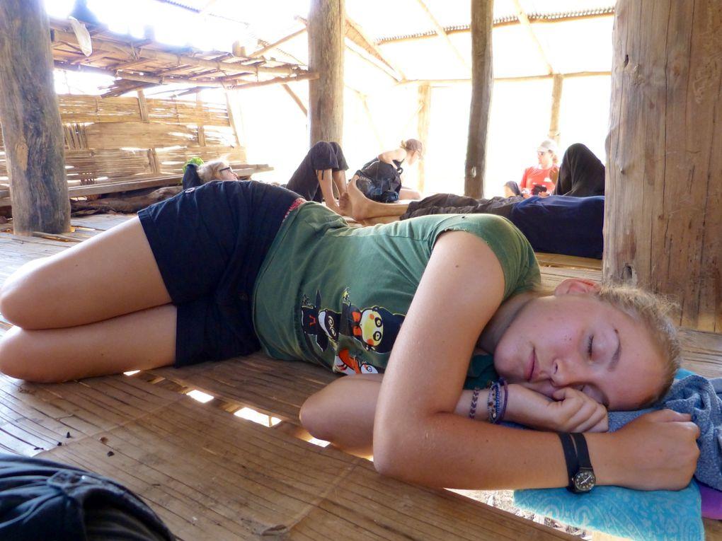 La rando: de la forêt à la rivière en passant par une cabane pour le pique nique et la sieste. Ici l'élevage de buffles est plus courant que celui de vaches .