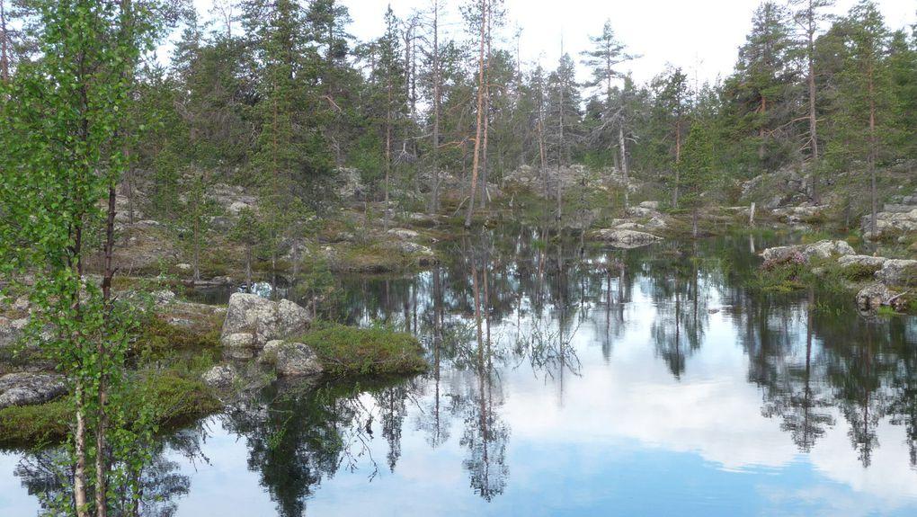 Un petit lac au bord de la route.