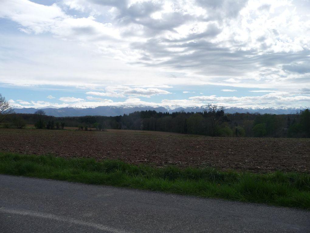 Les vues sur les Pyrénées .