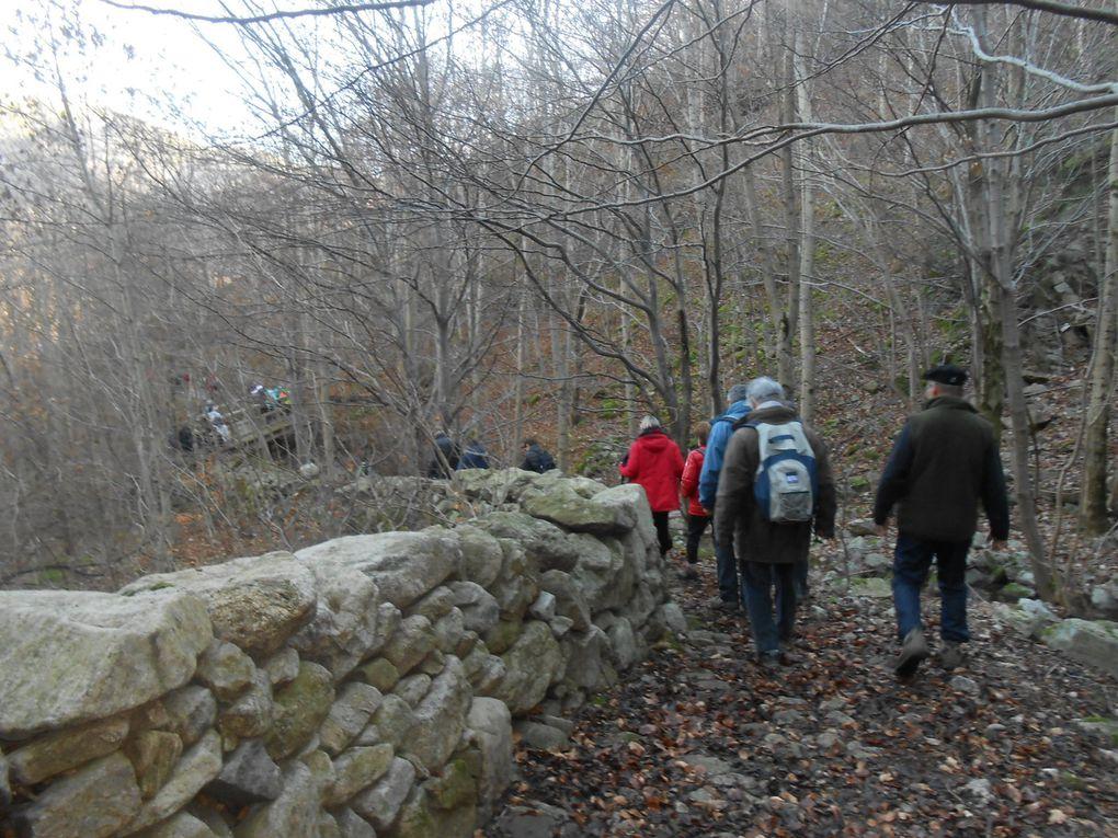 Le sentier longe le ruisseau puis l'enjambe grâce à une passerelle de bois, glissante