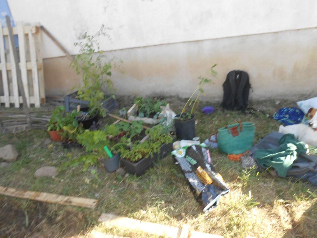 Mercedi après-midi: un chantier participatif