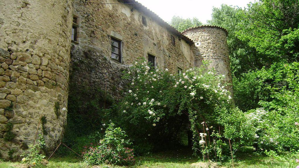 Château et jardins du Pin