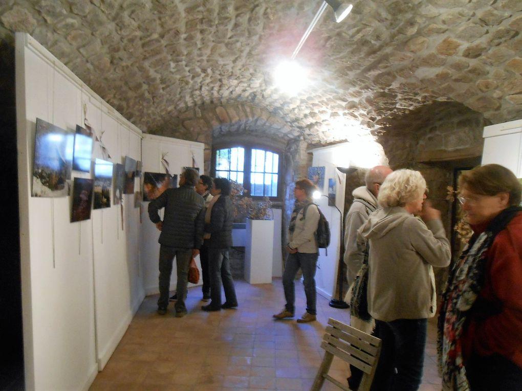 Les expositions de la salle Vincentis ont attiré un nombreux public (plus de 350 personnes dimanche)