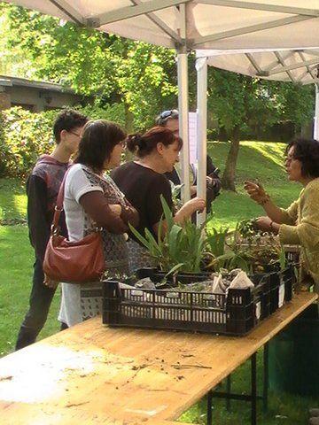 Bourse aux Plantes de samedi au Parc de la Mairie