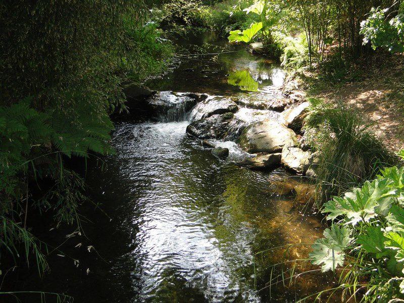 Le jardin botanique de Brest