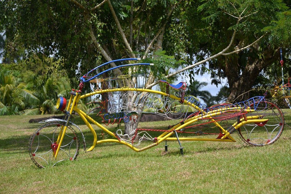 Bilan - Guyanes : Guyana, Suriname et Guyane Française