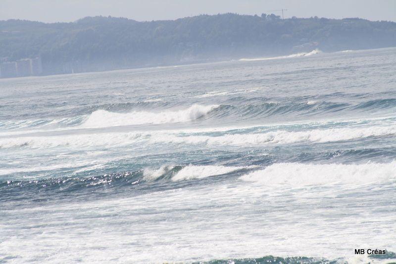 L'océan, ses vagues