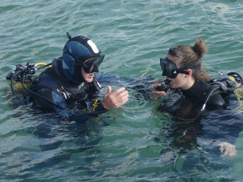 Baptême pour des futurs N1 !