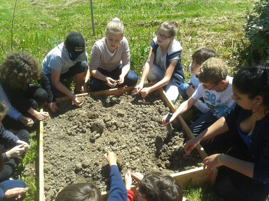 Leçon de jardinage pour les CM2