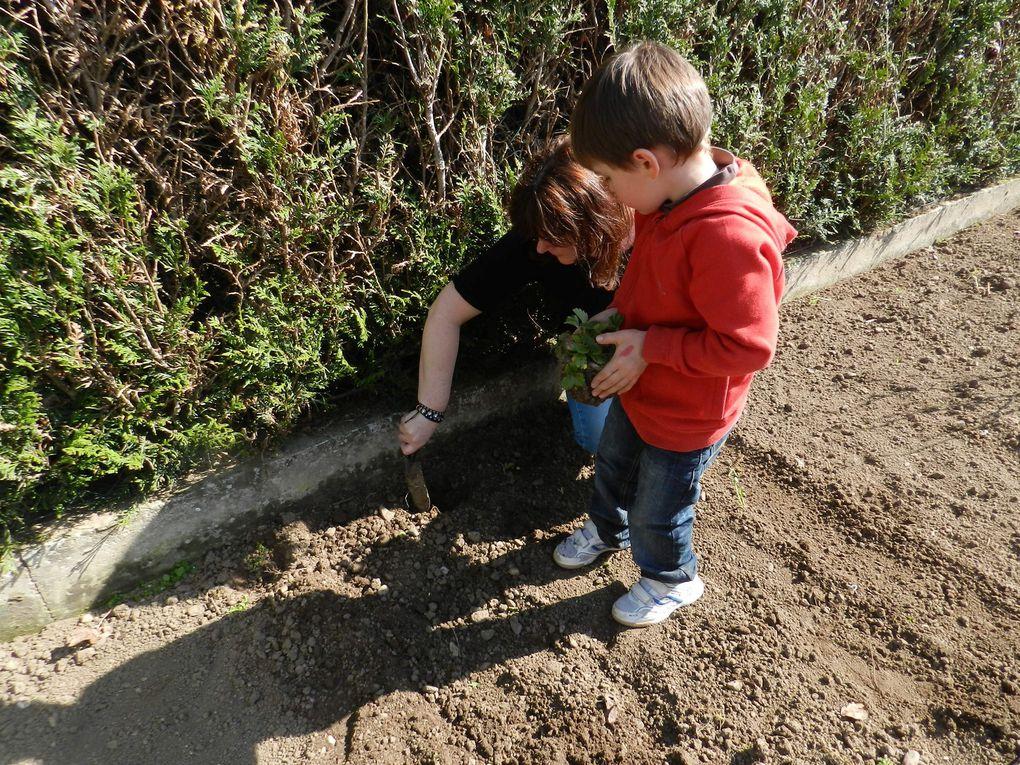Jardinage et motricité