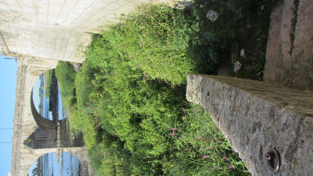 """Blois, le pont Jacques Gabriel, sous la place de la Résistance: """"For Anna with Love""""."""