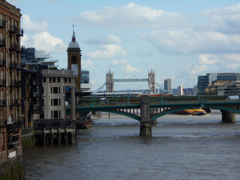Trafalgar Square, Cathédrale St Paul, Millenium Bridge, vue du Tate Modern