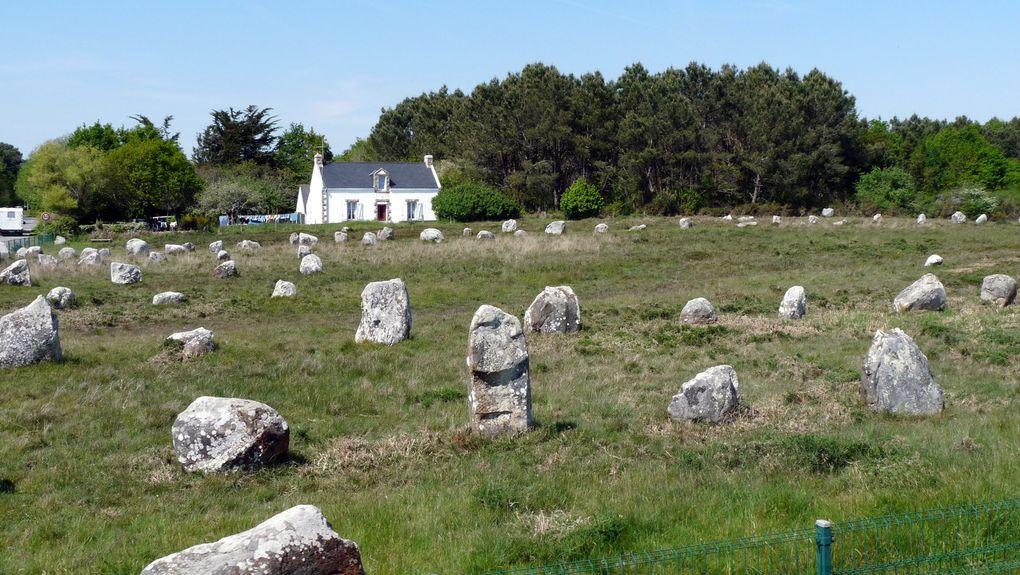Les mégalithes se divisent en plusieurs types : les menhirs et les dolmens sont les plus répandus. Les menhirs sont des pierres dressées fichées dans le sol. Disposés en ligne, les menhirs forment des alignements. Regroupés en cercle ou en demi-cercle, ils constituent des cromlechs. Le dolmen  « table de pierre » en breton, est composé de dalles monumentales assemblées sans l'aide de ciment ou de mortier &#x3B; il a pu servir de tombeau.