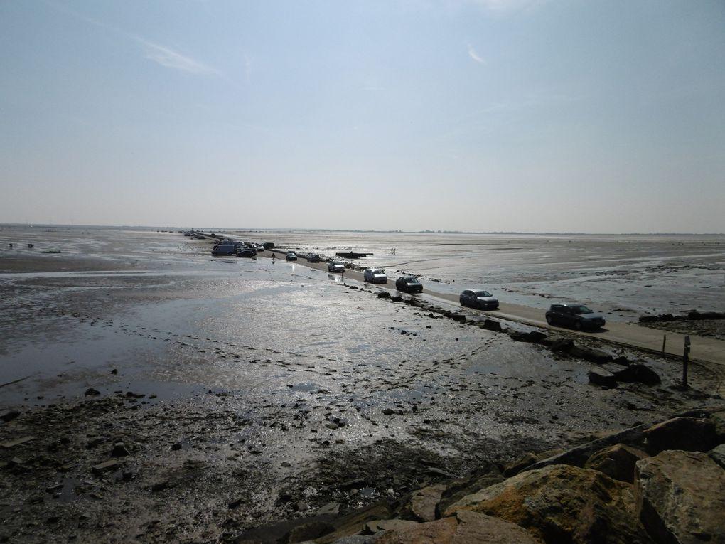 """la chaussée, les """"sauve qui peut"""", l'arrivée sur lîle de Noirmoutier avant le Marais de Sebastopol"""