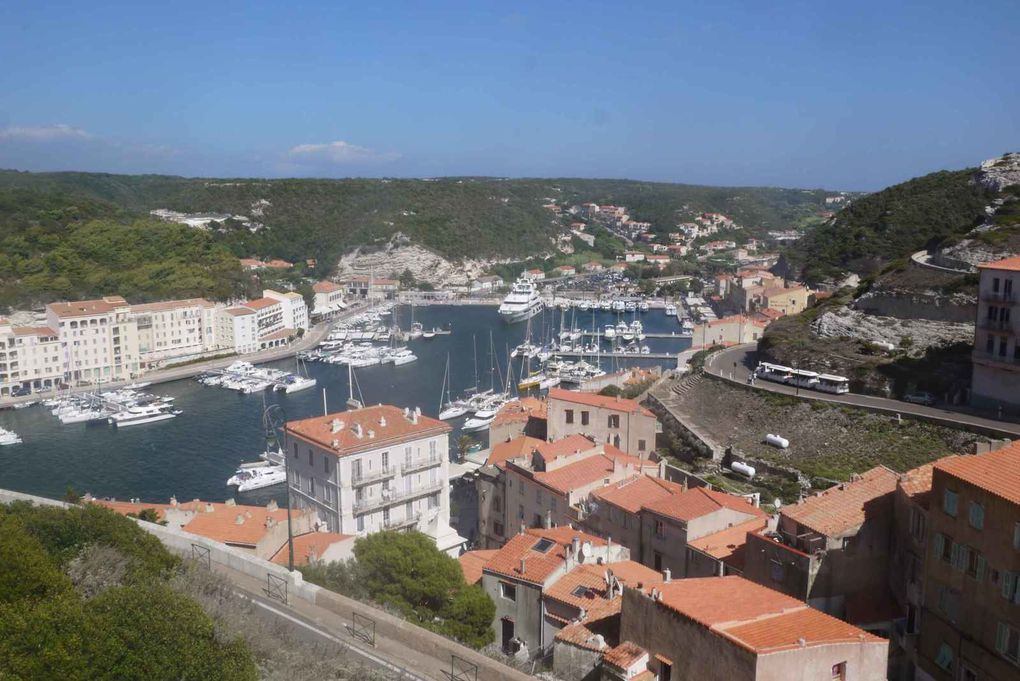 Falaises de Bonifacio par la mer, vue du port de Bonifacio, à l'ombre sous la paillote