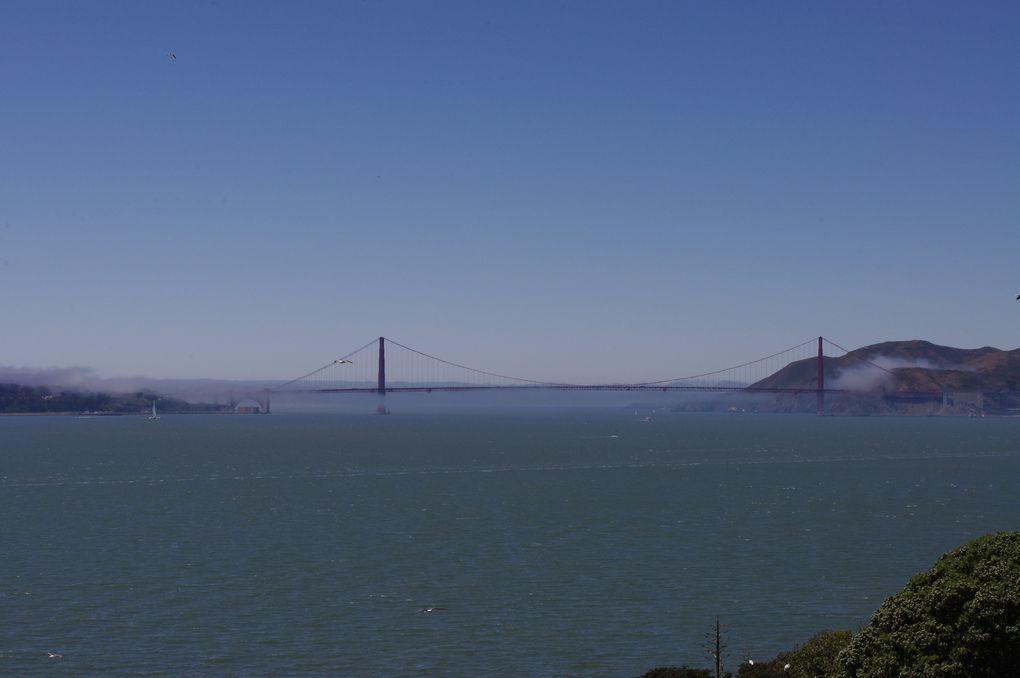 USA Road Trip - Jour 03/25 - San Francisco