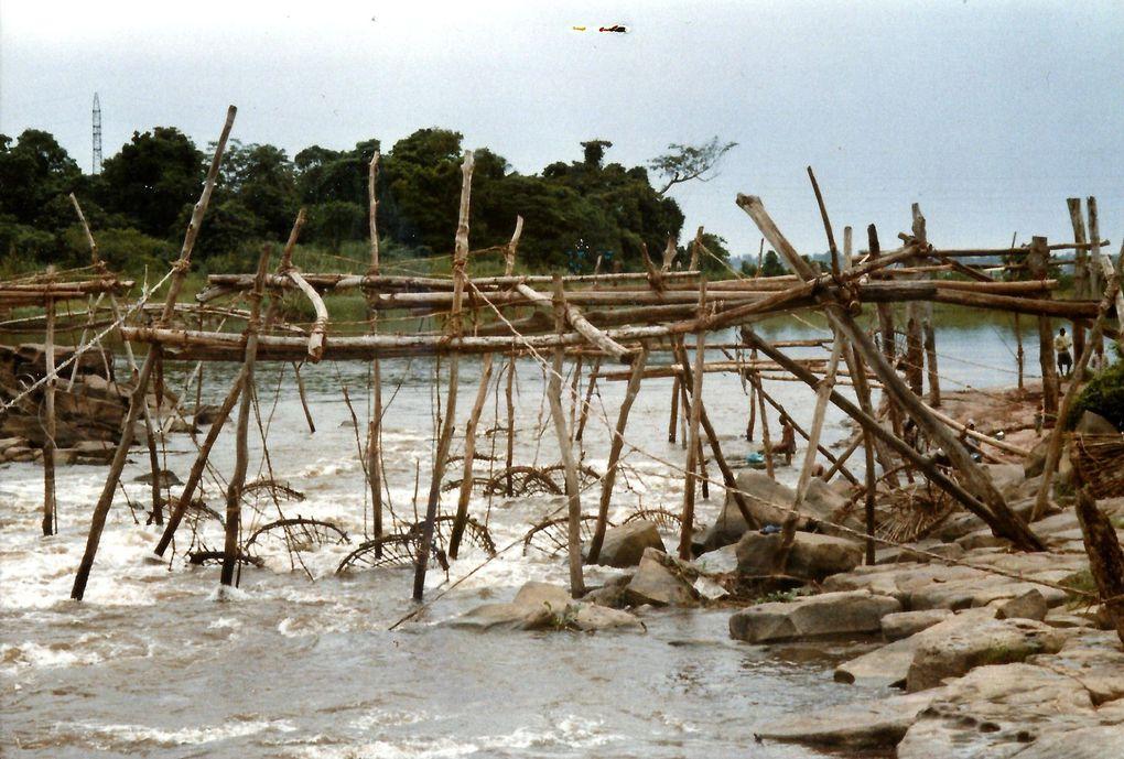 Séjour du Fieldmouse à Kisangani et aux Pêcheries Wagenia sur le fleuve Congo (credit : Bernard DESCHREVEL)