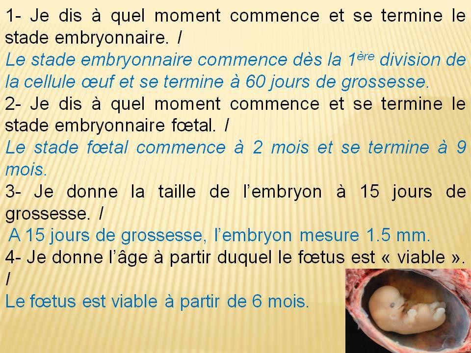 Leçon 5: Pour avoir un enfant, la cellule œuf issue de la fécondation doit se développer