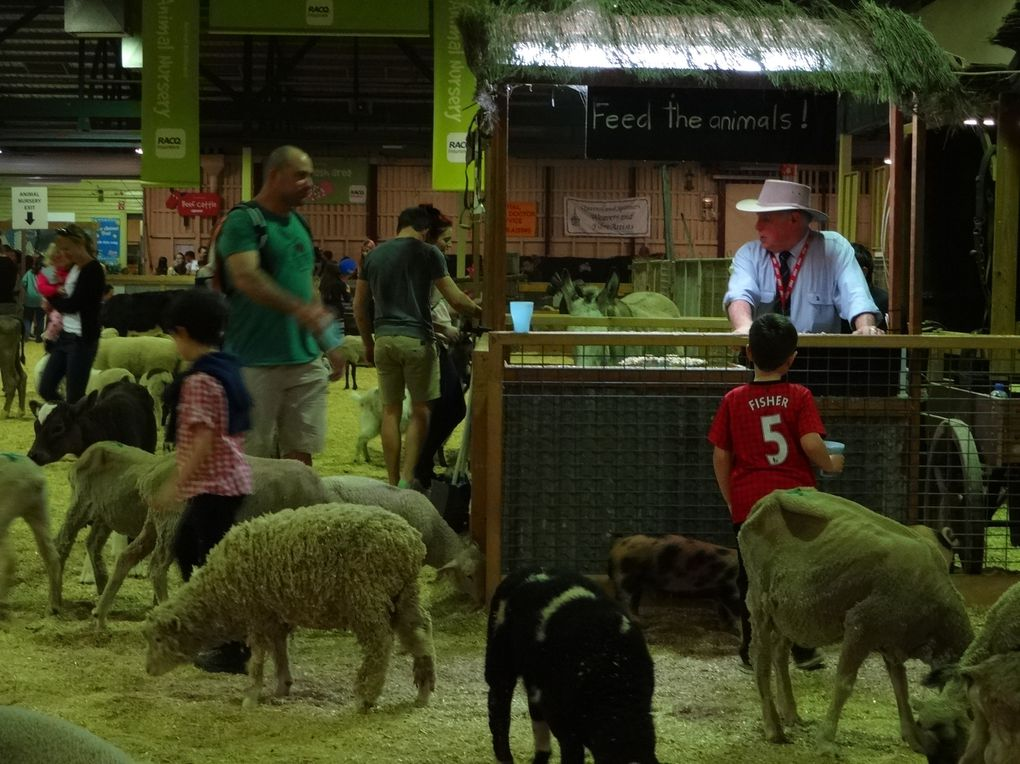 Farmfest - Toowoomba / The Ekka - Brisbane